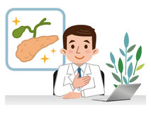 Doctor explaining the pancreas and gall bladder. Vector illustration. Original paintings and drawing Stock Photos