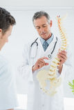 Doctor explaining the spine to patient in office Stock Photography