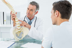 Doctor explaining spine to patient in office Royalty Free Stock Images
