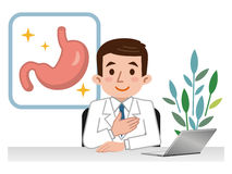 Doctor explaining the stomach Royalty Free Stock Photography