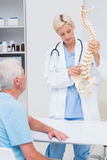 Doctor explaning spine model to patient in hospital. Female doctor explaning spine model to senior male patient in hospital stock images