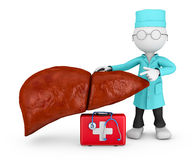Doctor explores liver Stock Photography