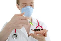 Doctor with flu vaccine syringe and toy pig Royalty Free Stock Photos