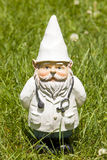 Doctor Gnome. A doctor gnome standing in the grass Stock Images