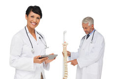 Doctor holding digital table with colleague by skeleton model Royalty Free Stock Image
