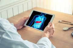 Doctor holding a digital tablet with liver on anatomy human body. Doctor holding a digital tablet with x-ray of pain in the liver royalty free stock photo