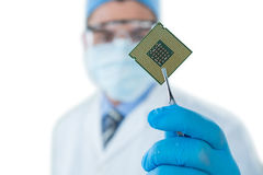 Doctor holding electronic chip with forceps. Against white background Stock Photo