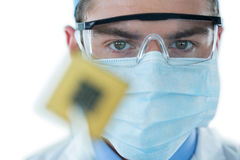 Doctor holding electronic chip with forceps. Close up of doctor holding electronic chip with forceps Stock Photos