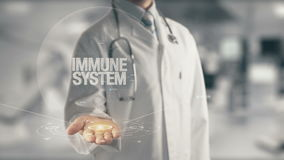 Doctor holding in hand Immune System. Concept of application new technology in future medicine Royalty Free Stock Photography