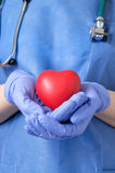 Doctor holding a heart Stock Photos