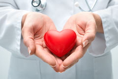 Doctor holding heart. Female doctor with the stethoscope holding heart Royalty Free Stock Photo