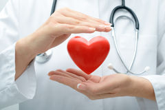 Doctor holding heart. Female doctor with the stethoscope holding heart Royalty Free Stock Image