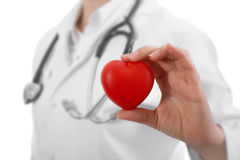 Doctor holding heart Stock Image