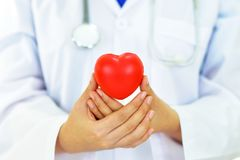 Heart care. Doctor holding heart in hands, heart care concept Royalty Free Stock Image