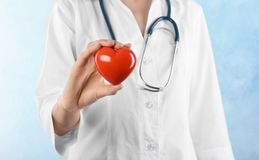 Doctor holding heart model on light background. Cardiology service. Female doctor holding heart model on light background. Cardiology service stock photography