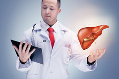 Doctor holding human organs and tablet on grey background . High resolution. royalty free stock photos