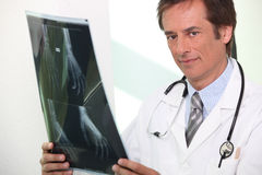 Doctor holding radiography Stock Images
