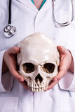 Doctor holding a skull in his hands Royalty Free Stock Photos