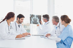 Doctor holding up an x-ray Royalty Free Stock Photo