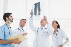 Doctor holding up an x-ray Stock Photography