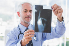 Doctor holding an x-ray Stock Images
