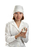 Doctor holds dental model in hands Royalty Free Stock Image