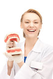 Doctor with jaws. Picture of attractive female doctor with jaws stock photo