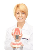 Doctor with jaws Royalty Free Stock Photography