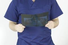 Doctor looking at a dental radiography stock photos