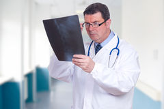 Doctor looking x-ray Stock Images
