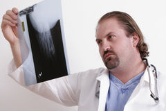 Doctor looking at x-ray. Doctor in a white coat holding up an x-ray Stock Photography