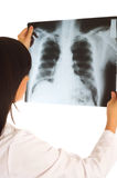 Doctor looking at x-ray image on white Stock Images