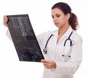 Doctor is looking at sectional Royalty Free Stock Photos