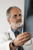 Doctor Looking at X-ray. Isolated Stock Photos