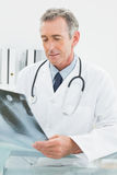 Doctor looking at xray picture of lungs in medical office Stock Images