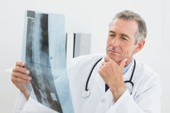 Doctor looking at xray picture of spine in office Stock Image