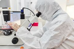 The doctor looks into the microscope. The scientist conducts research. stock photography