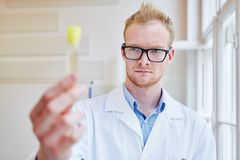 Doctor makes alcohol test. With urine sample and analysis stock image