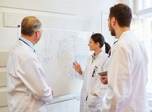 Doctor makes medical presentation. With flipchart and statistics royalty free stock photos
