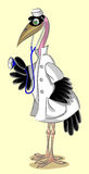 Doctor -  marabou. The serious marabou stork, in a medical form, holds a stethoscope Royalty Free Stock Photos
