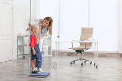 Doctor measuring little girl`s height. In hospital stock image