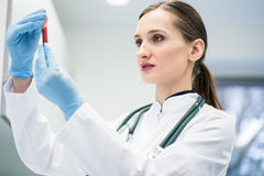Doctor in medical laboratory looking at blood test. She is holding in her hand Stock Images