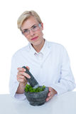 Doctor mixing herbs with mortar and pestle Royalty Free Stock Photo