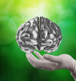 Doctor neurologist hand show metal brain Royalty Free Stock Photo