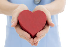 Doctor or nurse holding heart Stock Images