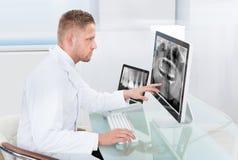 Doctor o radiólogo que mira una radiografía en línea Fotografía de archivo
