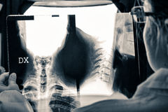 Doctor observes the X-ray Royalty Free Stock Photo