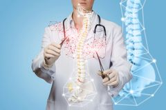 A doctor operating with artificial spine model with medical tools stock photography
