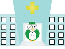 Doctor owl Stock Photo