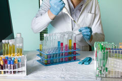 Doctor pipetting sample for study in tube Royalty Free Stock Photos